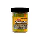 Berkley Powerbait natural scent rainbow garlic