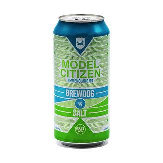 BrewDog BrewDog collab/ Salt - Brewdog vs Salt: Model Citizen