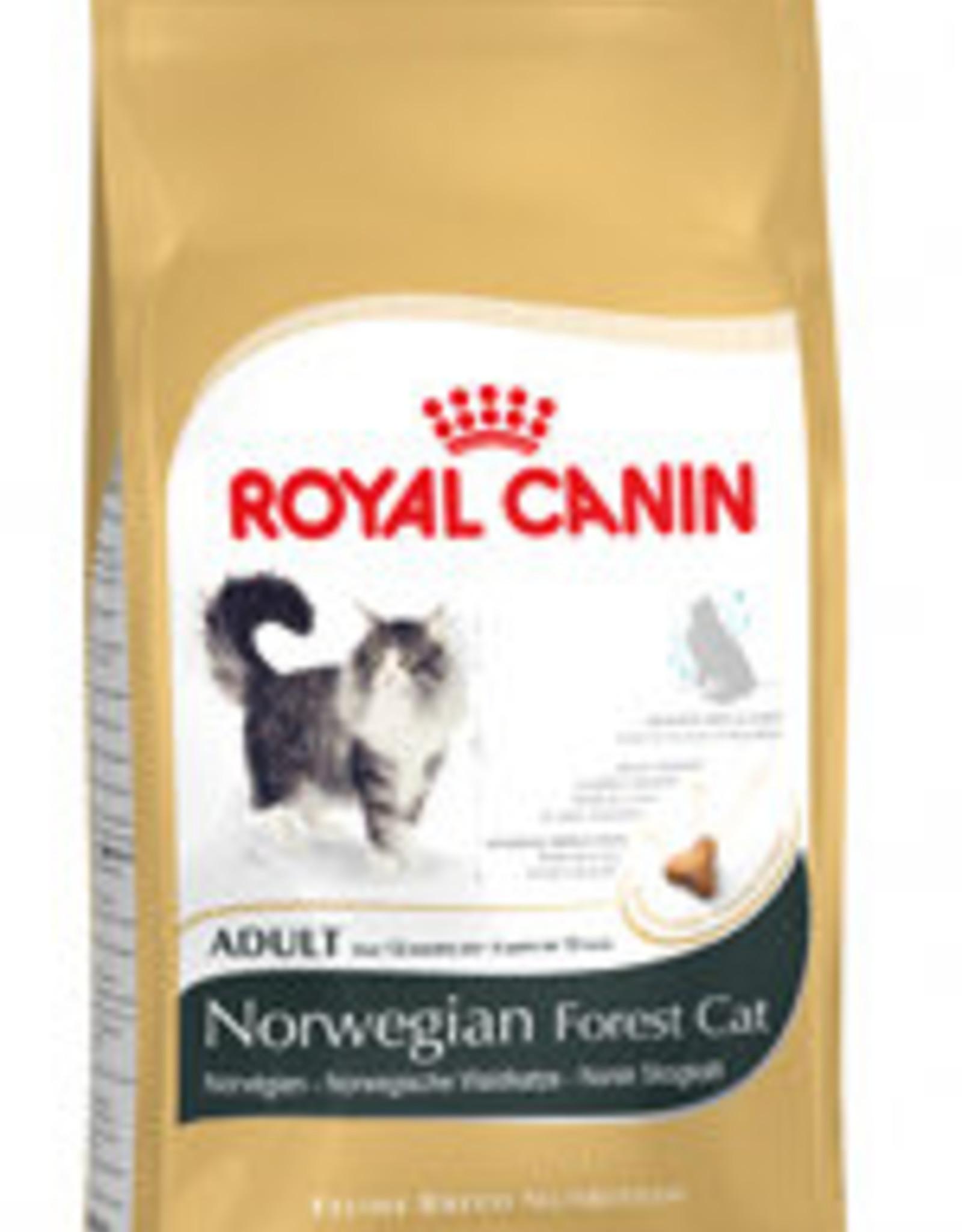 Royal Canin Royal Canin Fbn Norwegian Forest 10kg
