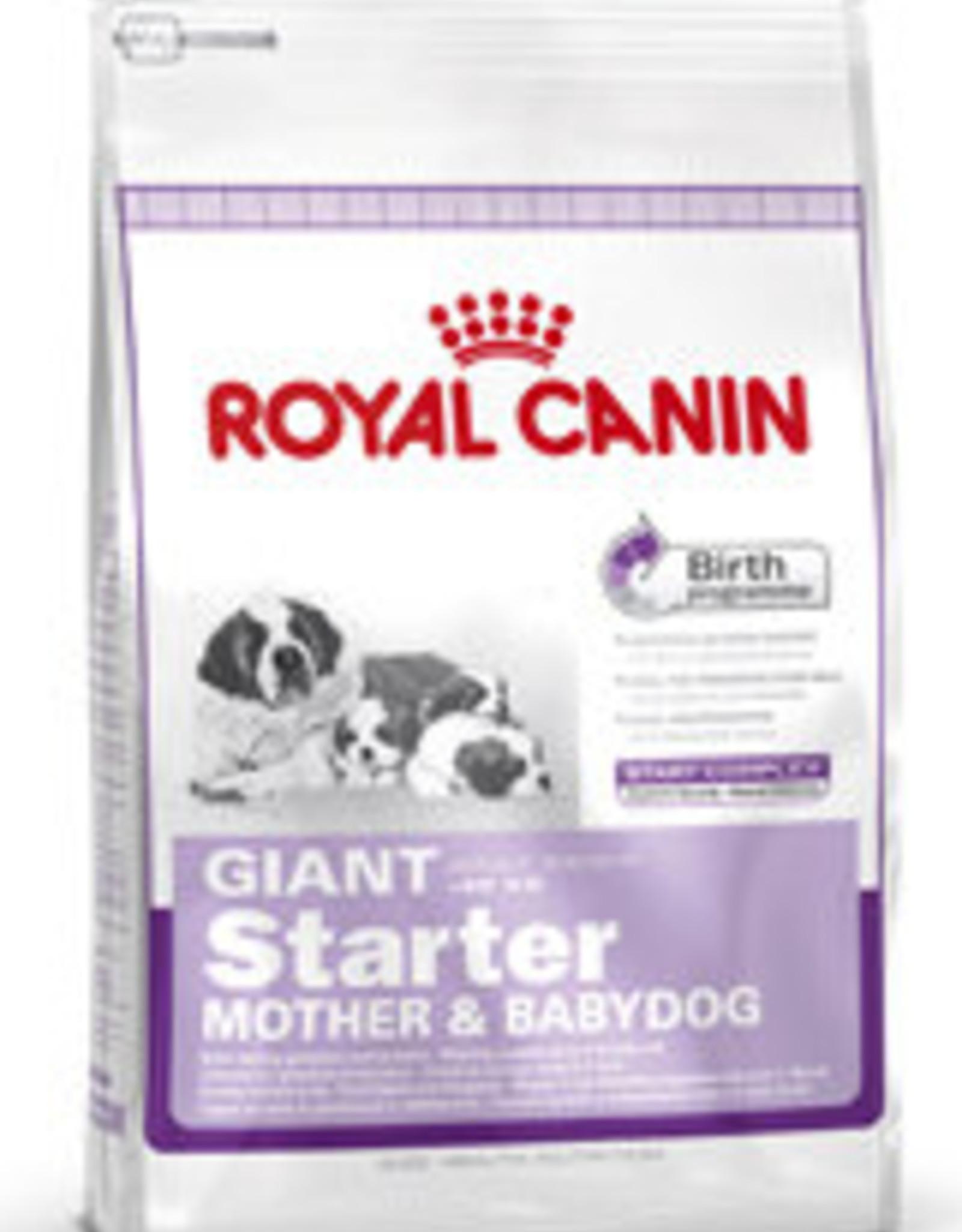 Royal Canin Royal Canin Shn Giant Starter Mother&babydog 1kg