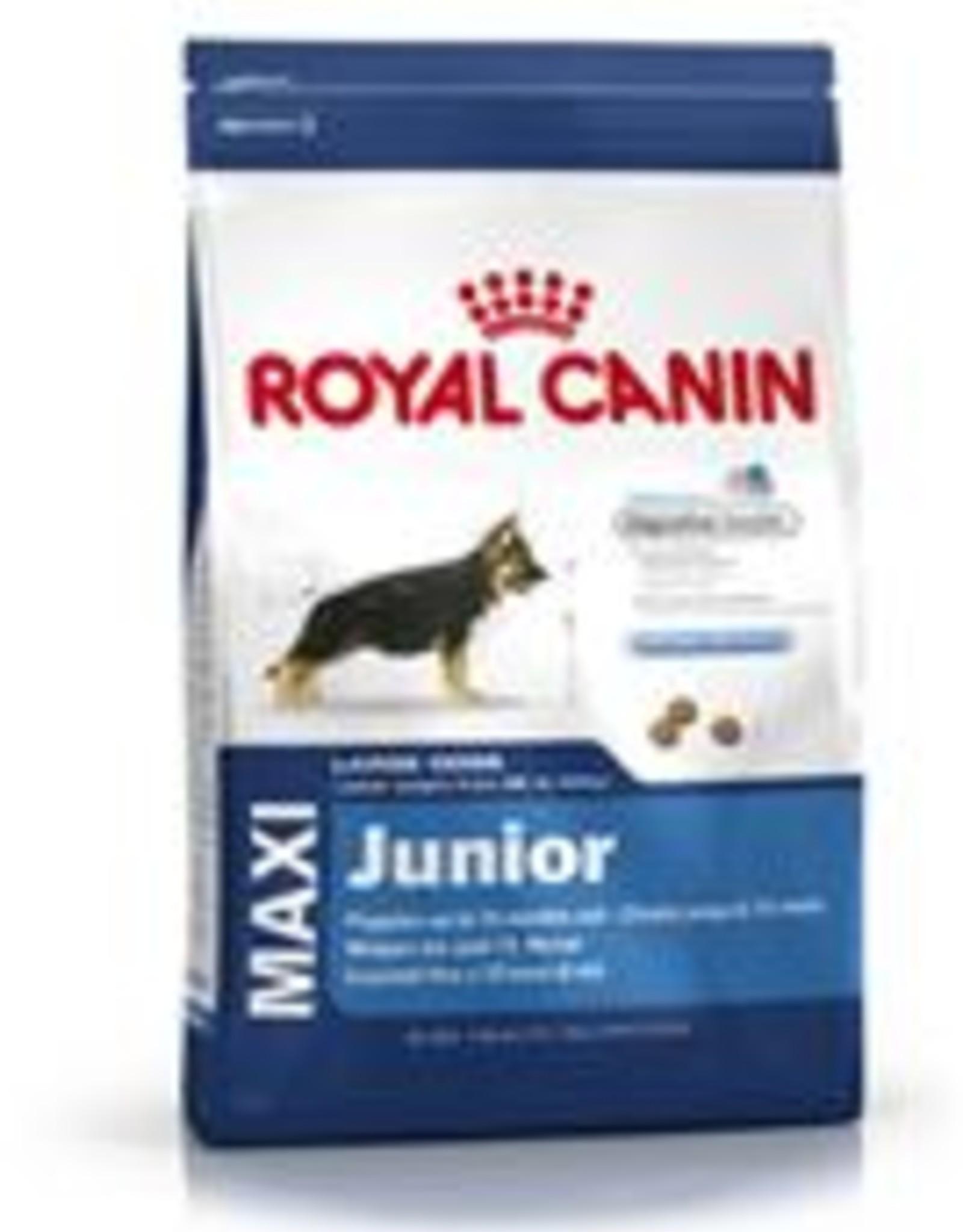 Royal Canin Royal Canin Shn Maxi Junior Rind Hund 10kg