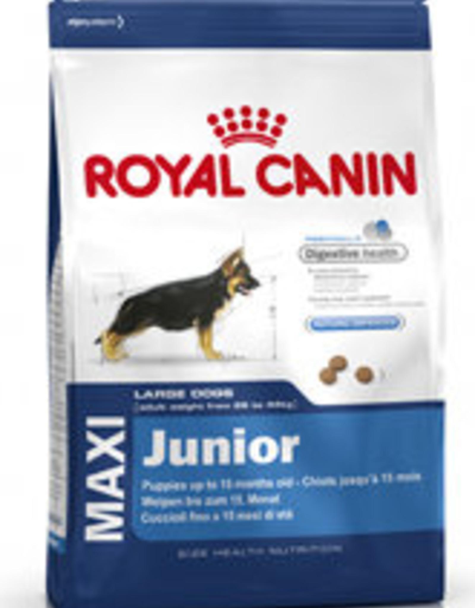 Royal Canin Royal Canin Shn Maxi Junior Hond 4kg