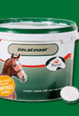 Primeval Horse Gelatinate 5kg