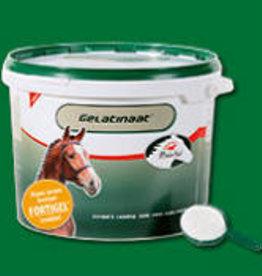 Primeval Paard Gelatinaat 5kg