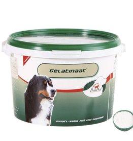 Primeval Hond Gelatinaat 2kg