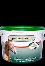Primeval Paard Gelatinaat 2kg