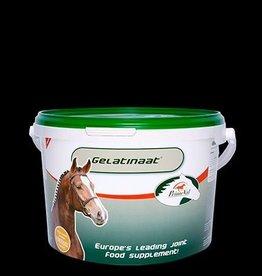 Primeval Pferd Gelatine 2kg