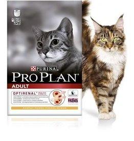 Pro Plan Adult Kat Chicken Rice 10kg