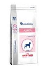 Royal Canin Royal Canin Digest Skin Junior Hond 4kg