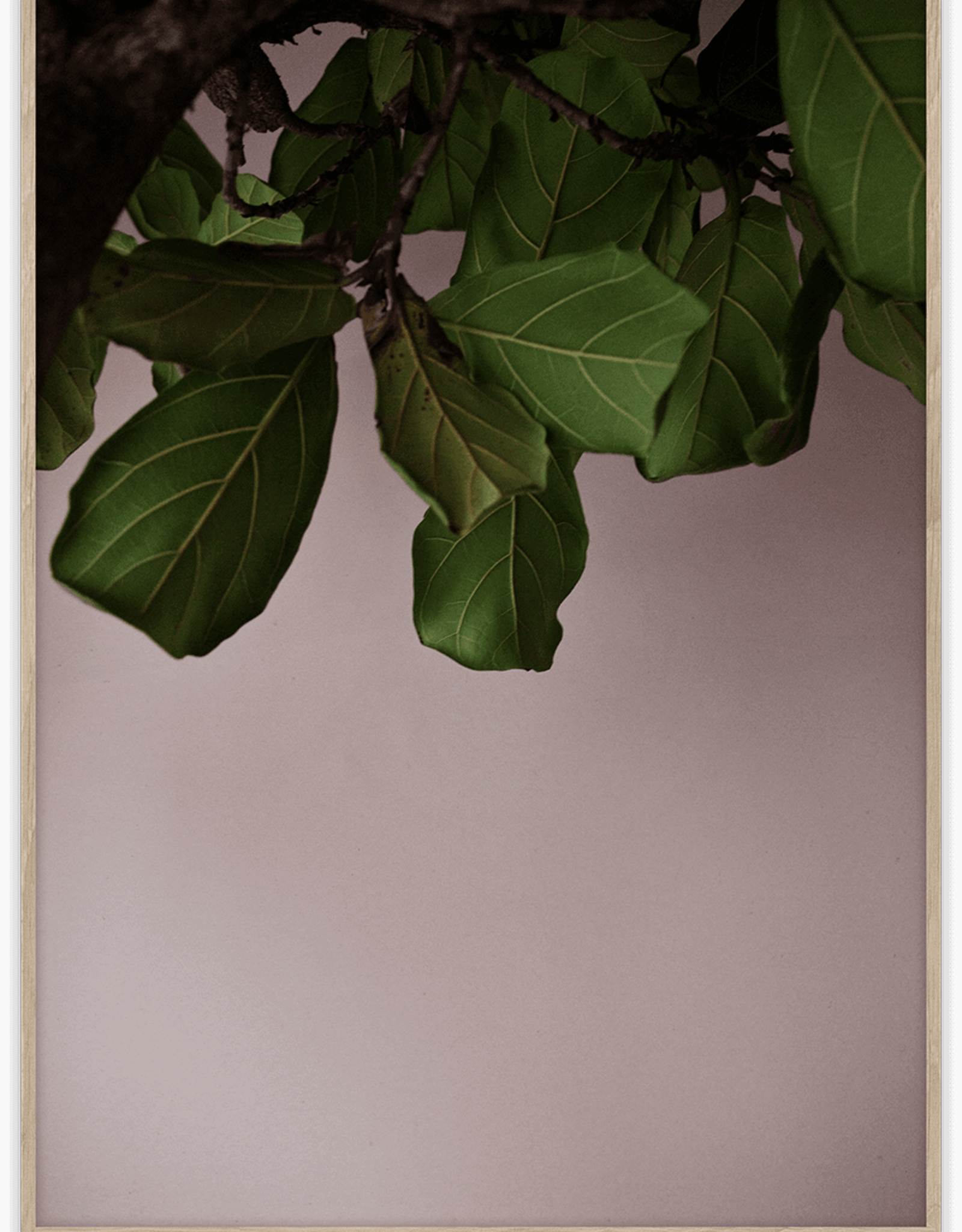 Paper Collective Paper Collective Poster Norm Architects Green Leaves 30x40
