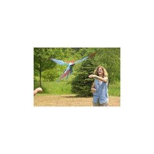 Aviator Aviator Flight Line - Laat je vogel buiten vliegen!