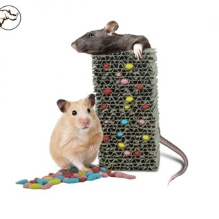 Back Zoo Nature Fill Your Own Treat Block Rodent