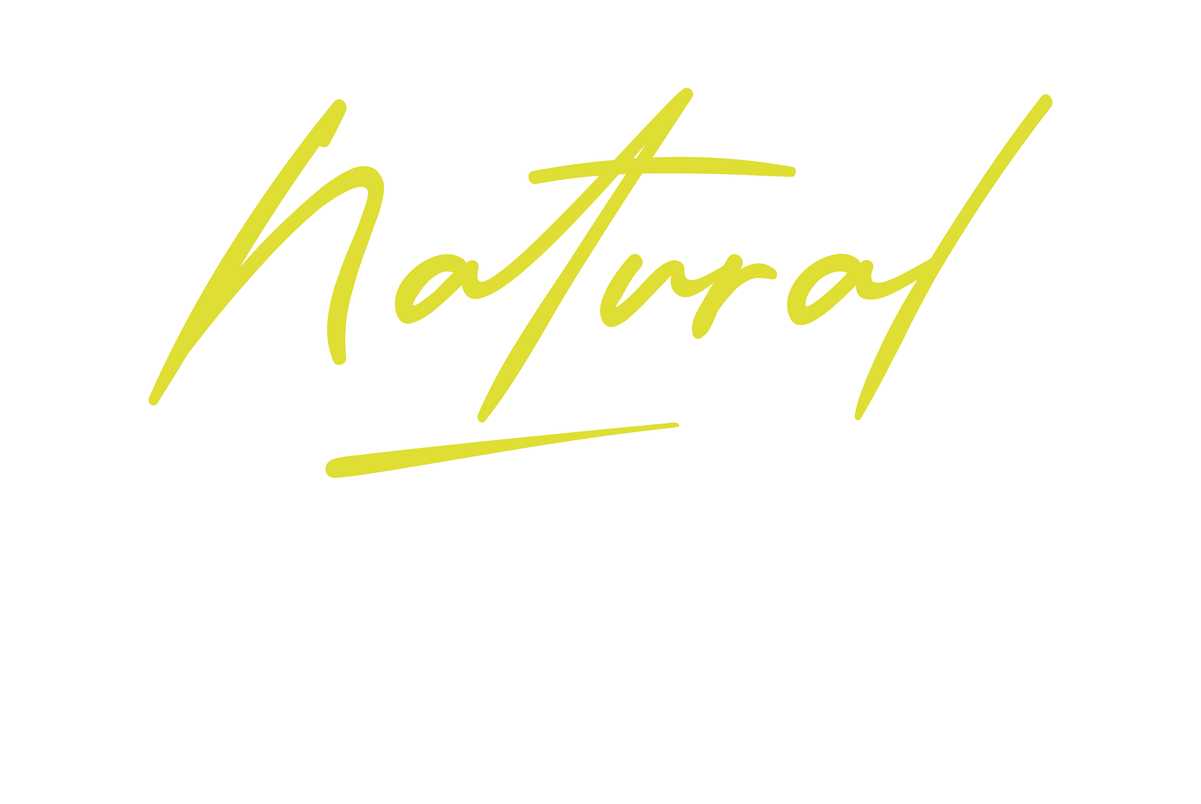 Natural Nutrition by Nieky Holzken