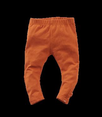 Z8 Z8 Newborn celandine - Pecan pie legging
