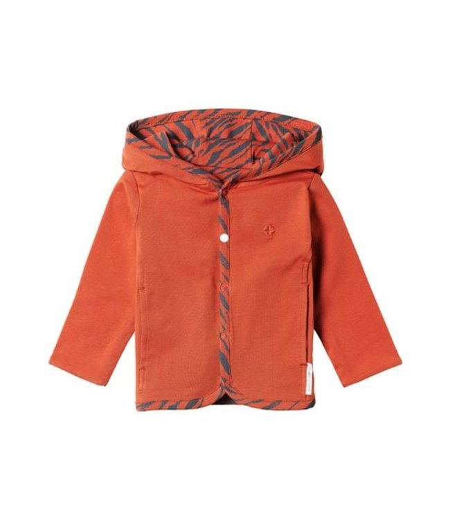 Noppies Limited cardigan reversible spicy ginger