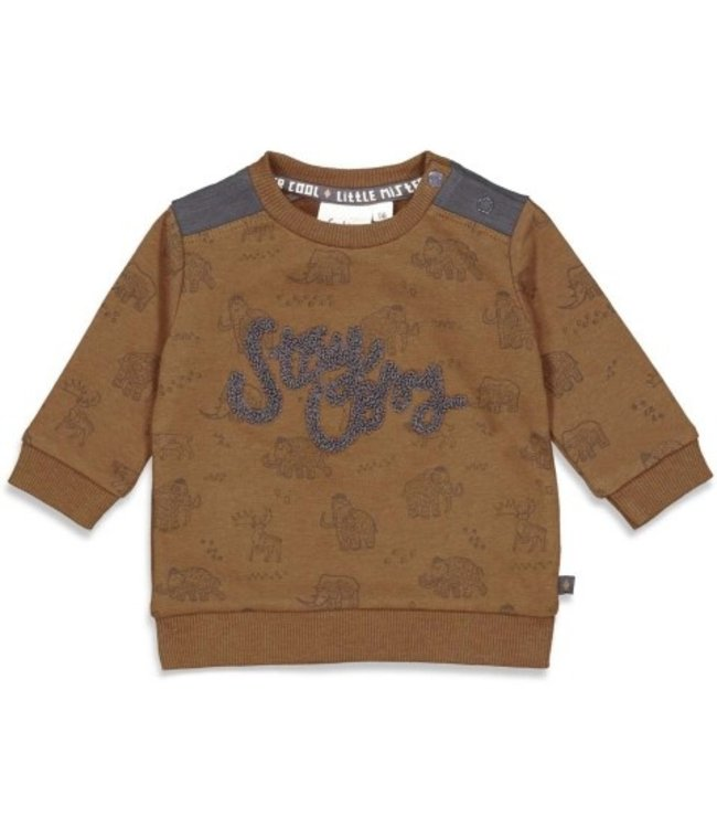 Feetje Feetje Sweater AOP - Cool Adventure Bruinmelee 51601771