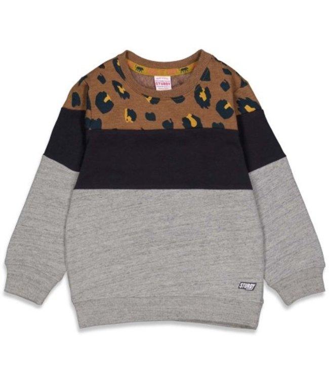 Sturdy Sturdy Sweater - On A Roll Bruin 71600449