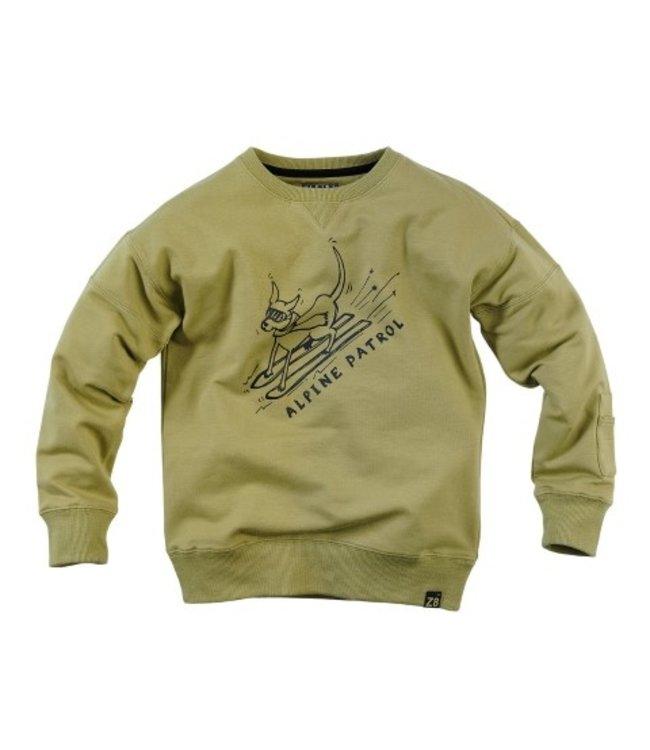 Z8 Z8 Kids Boys Rolf Sweaters Misty moss