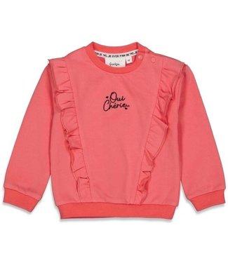 Feetje Feetje Sweater - Ooh La La Roze 51601810