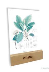 Maandelijks Alma op het werk