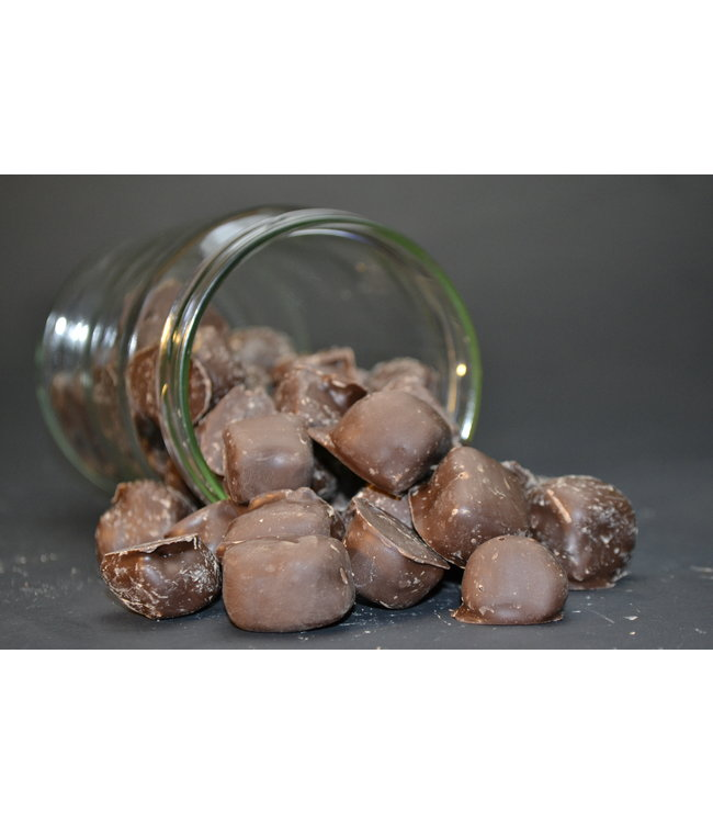 Chocolade Gember Puur