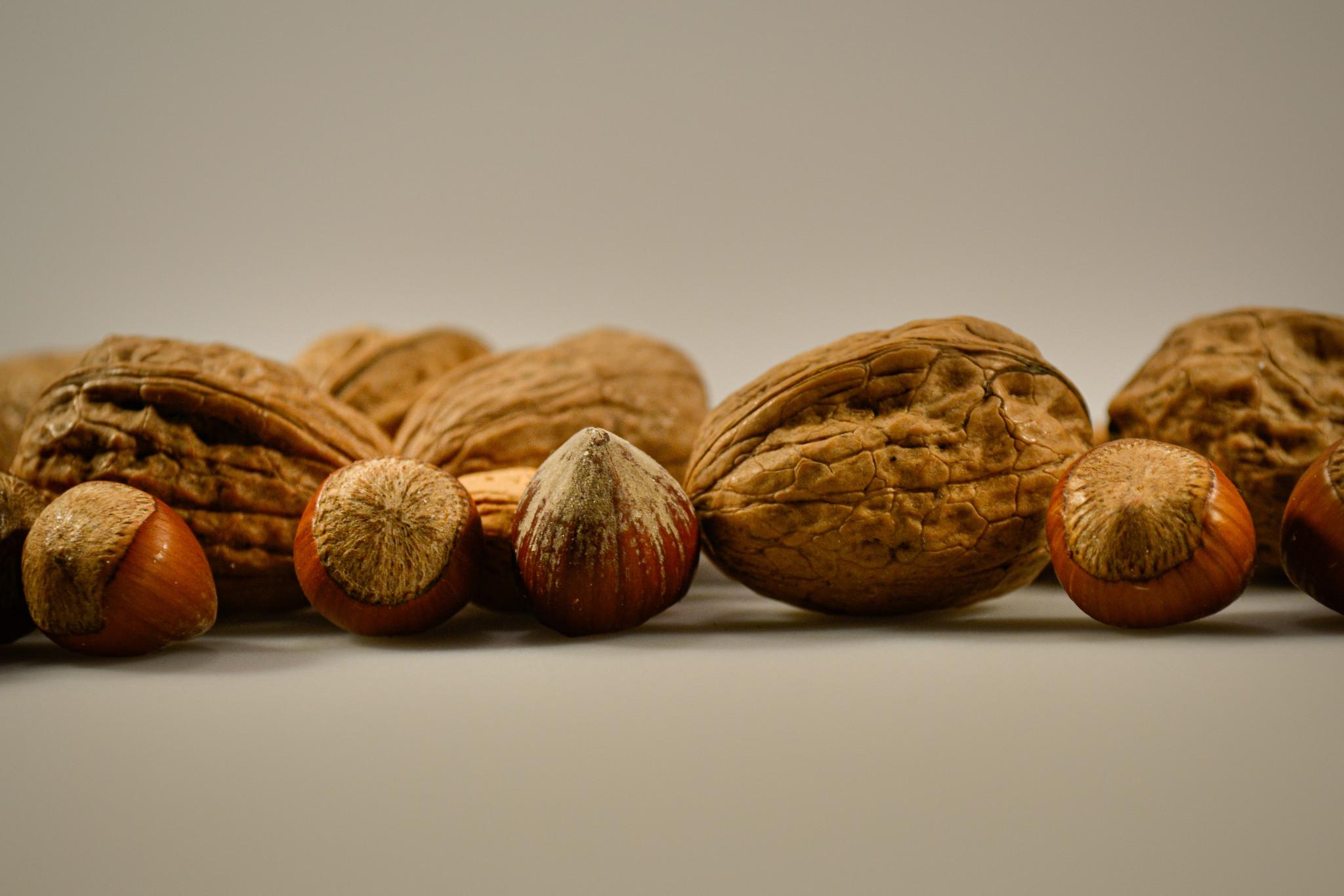 De walnoot in een notendop