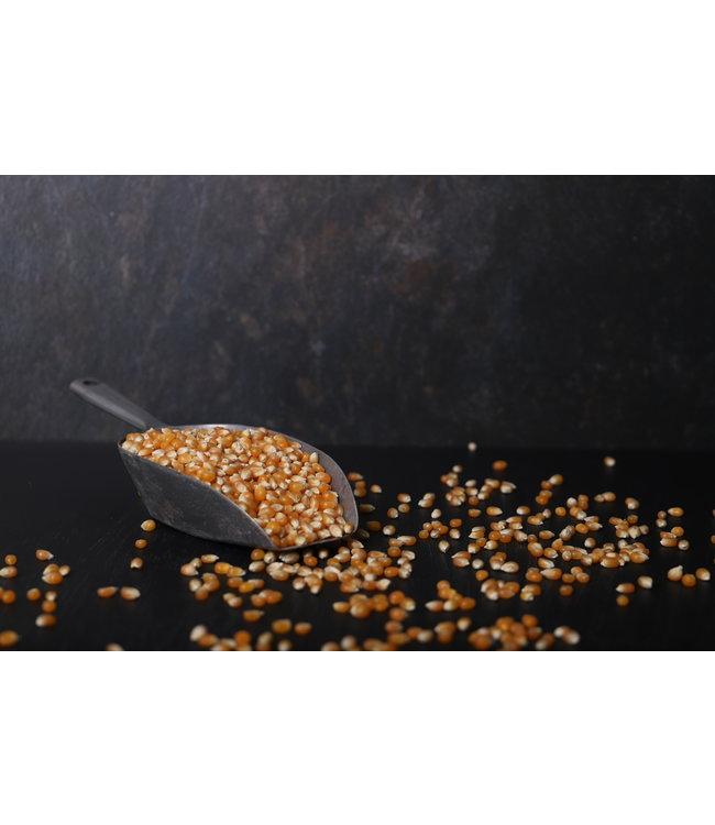 Biologische popcorn mais