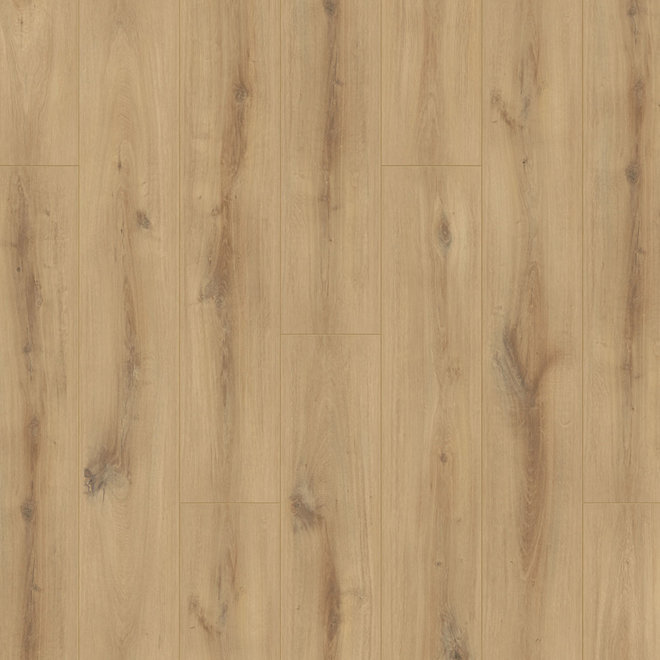 Hamilton Oak Laminate Flooring 8mm, Water Resistant Laminate Flooring