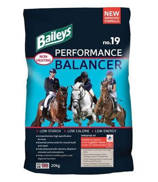 Baileys BAILEYS NO.19 PERFORMANCE BALANCER, 20 kg