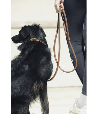 "PÉNÉLOPE PÉNÉLOPE ""Point Sellier"" Dog Leash"