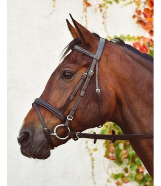 EquiSential EquiSential Bridle & Reins