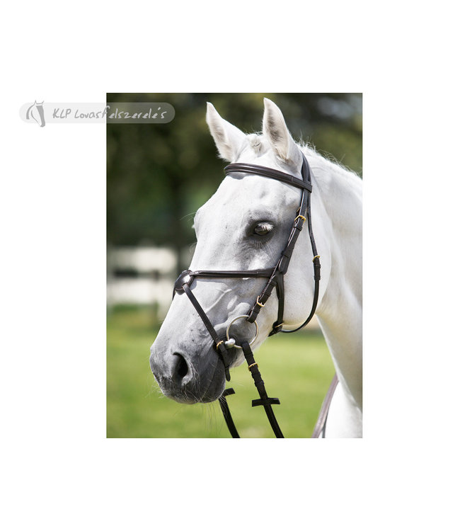 TATTINI BRIDLE with crossed raised noseband, soft rubber grip reins, PONY, black