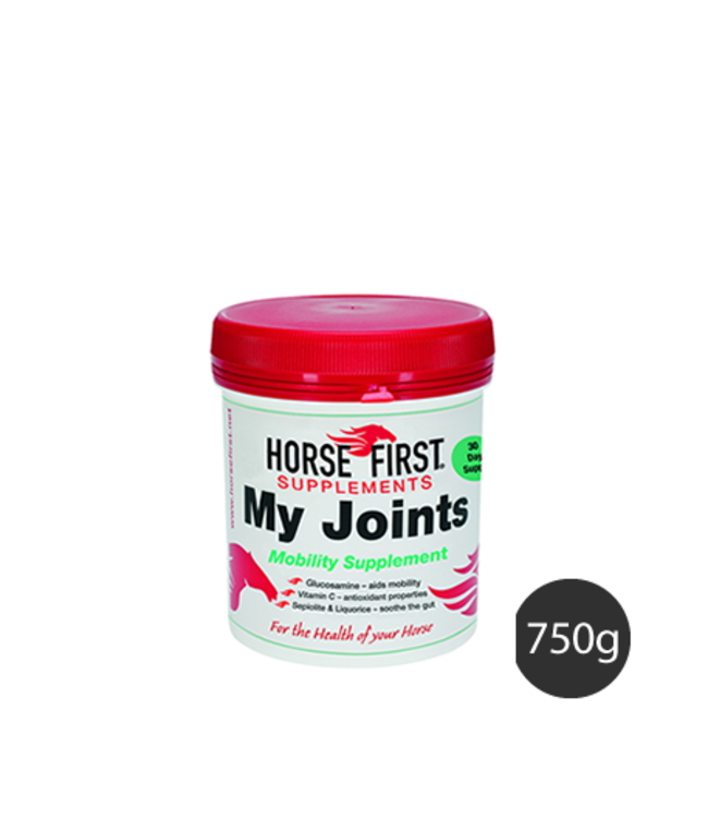 HORSE FIRST 'MY JOINTS',