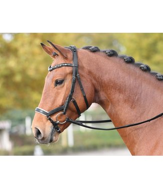BUSSE BUSSE 'FEELING' BRIDLE, Full, Brown w/Diamond Browband
