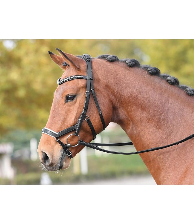 BUSSE 'FEELING' BRIDLE, Full, Brown w/Diamond Browband