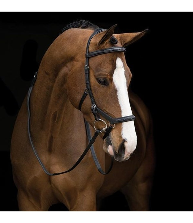 HORSEWARE 'RAMBO' COMPETITION BRIDLE Pony Black
