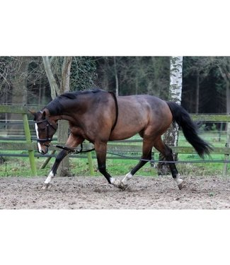 Horka HORKA COTTON LUNGING AID