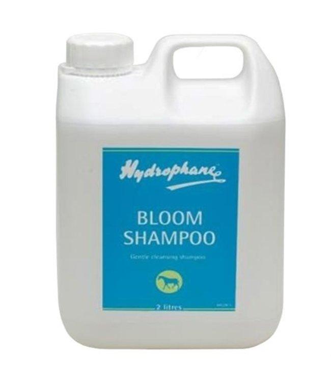 BLOOM SHAMPOO, 5 Ltr
