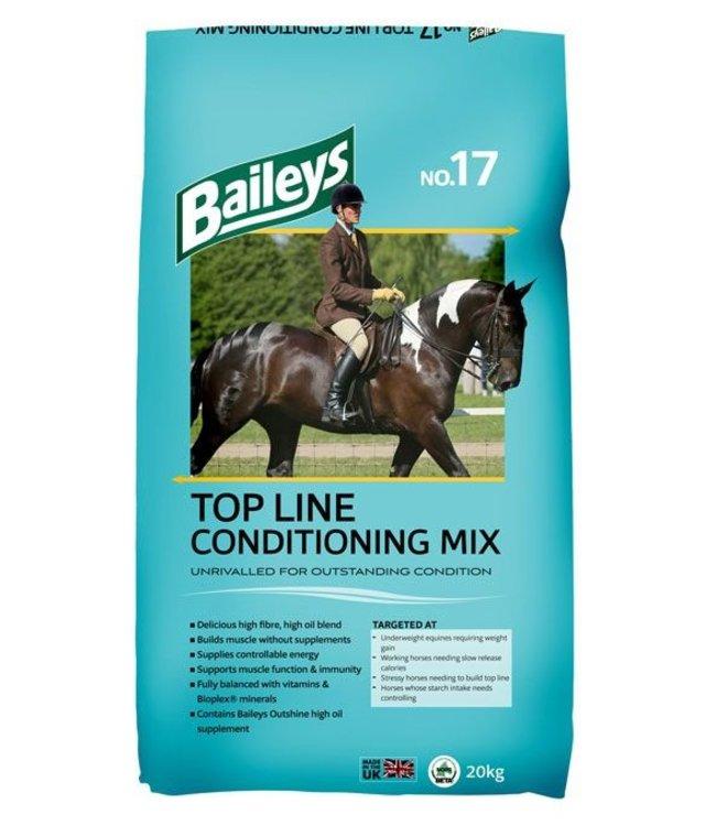 BAILEYS NO.17 TOP LINE CONDITION MIX