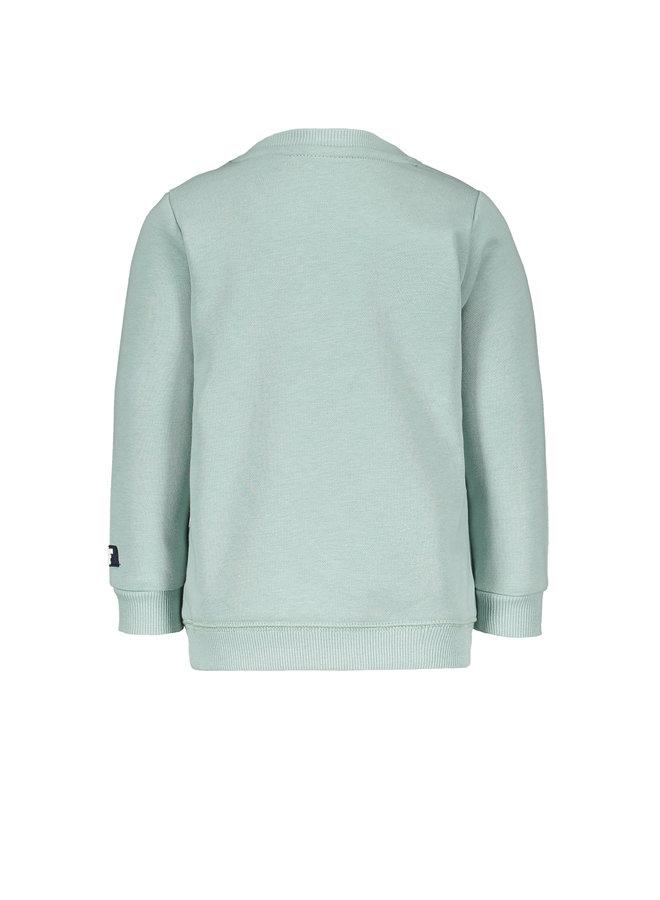Flo baby boys sweater LF leopard Mint