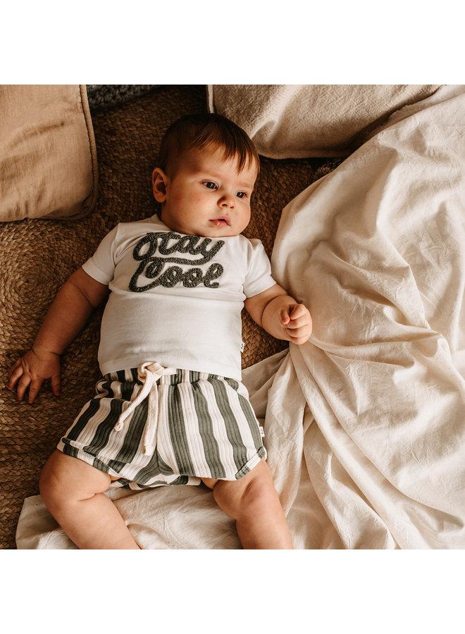 Bold Stripes | Shorts Old Green