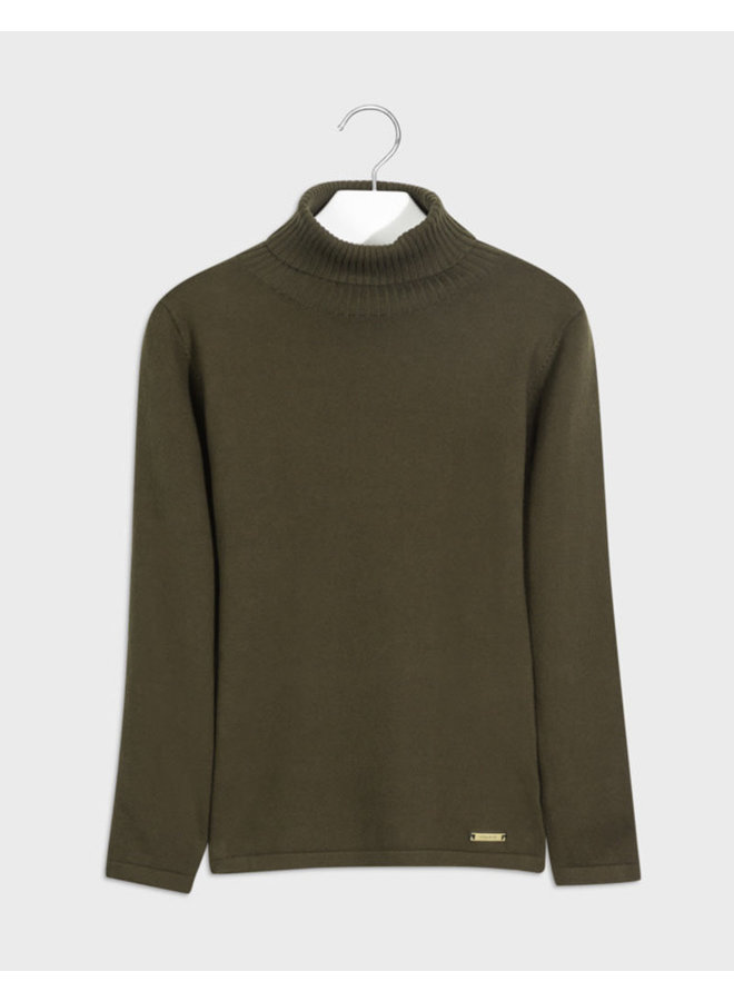 Basic Knitting Turtleneck Green