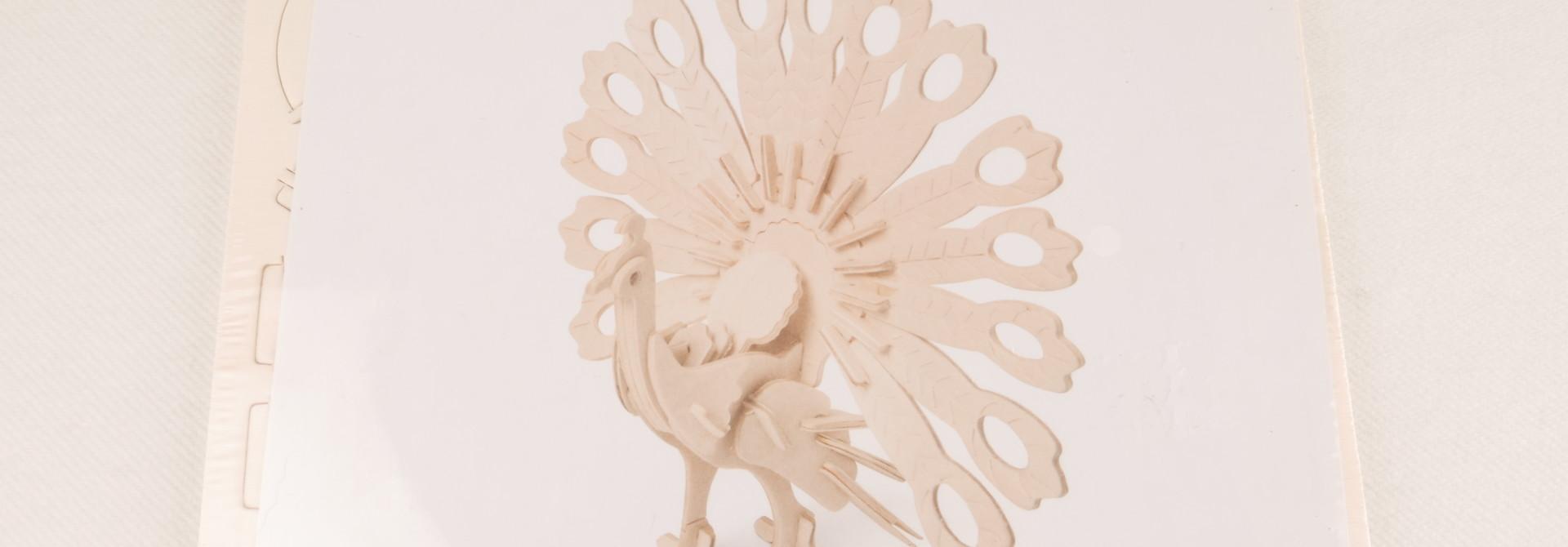 3D bouwpakket pauw
