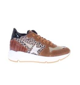 Gattino Gatino-Sneaker-Naturel-Combi