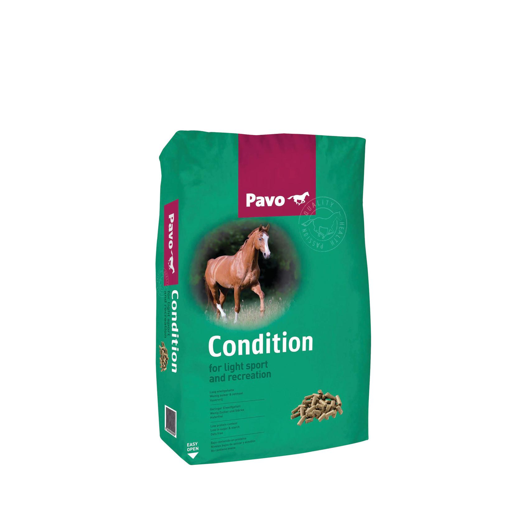 Pavo Pavo Condition