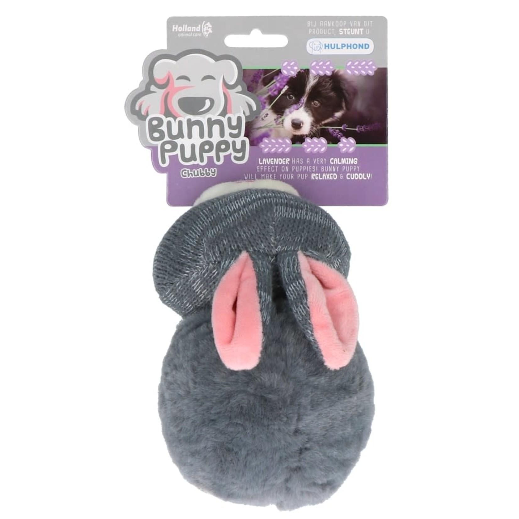Hofman Bunny Puppy Chubby