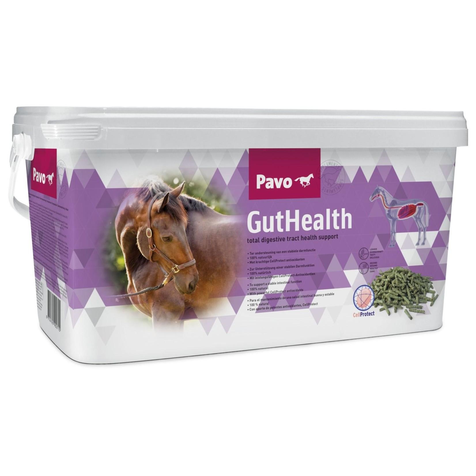 Pavo Pavo GutHealth 8 KG