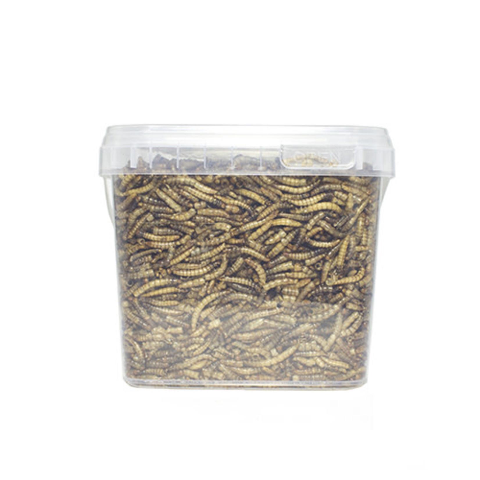 Smulders Diervoeders Meelworm Buitenvogels 1,2 ltr