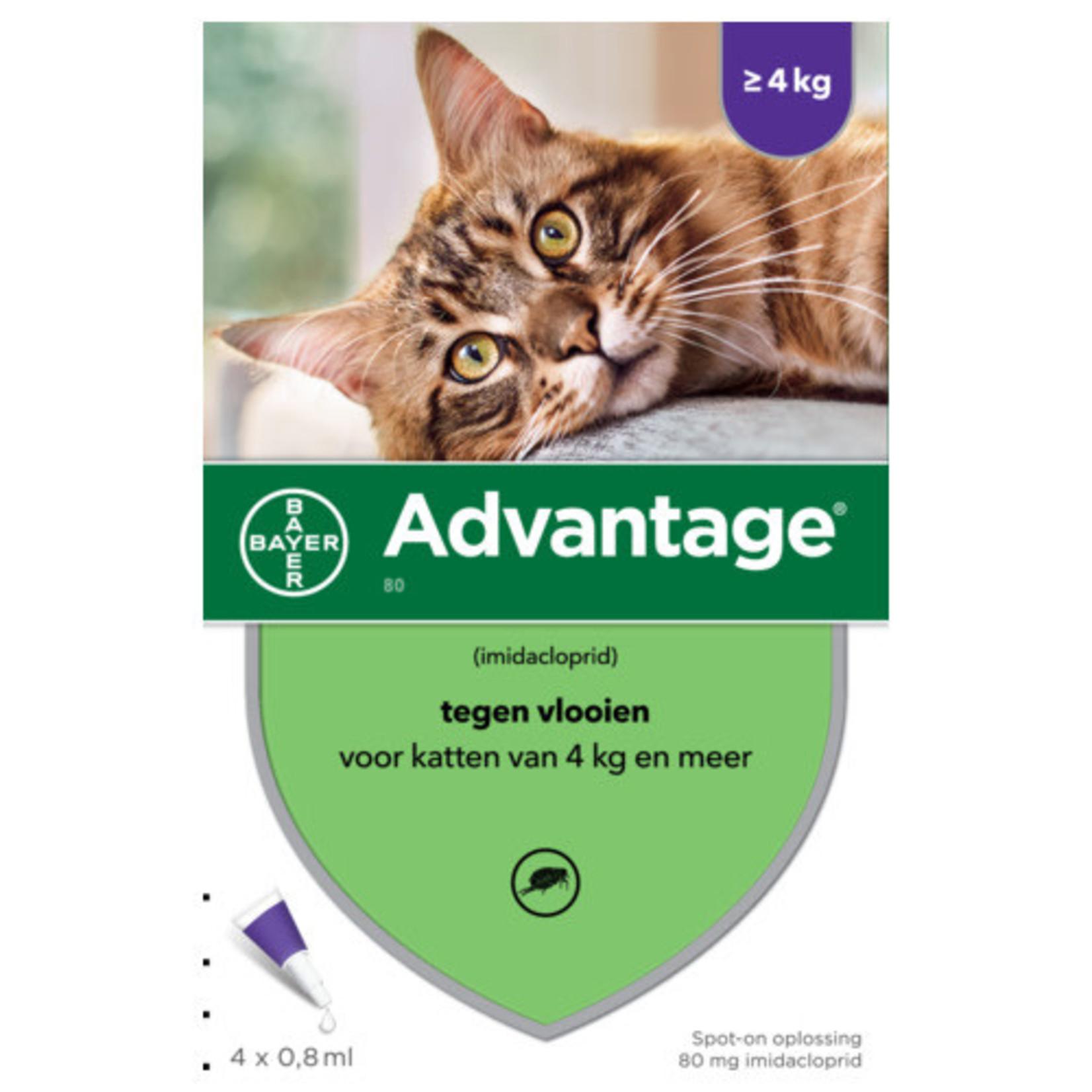 Advantage Advantage kat 80 (vanaf 4 kg)