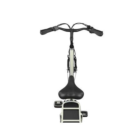 Altec Altec Sapphire E-Bike 518Wh N-3 Mistique Nieuw
